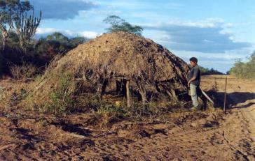 Eine Hütte der unkontaktierten Ayoreo