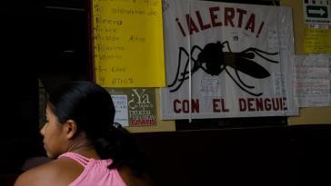 Warnung vor der Mücke: Mosquitos übertragen den Dengue-Erreger