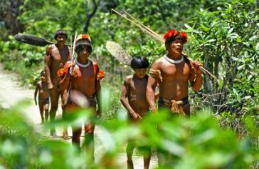 Perspektive auf Indigene im Amazonas