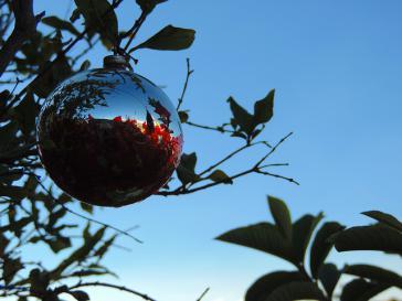 Weihnachten 2015 wirdin Lateinamerika mit unterschiedlichen Gefühlen gefeiert