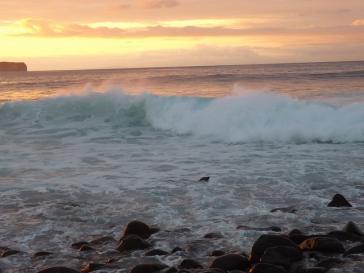Meeresufer auf den Galapagos-Inseln vor Ecuador