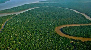 Über 46.000 Quadratkilometer Amazonas-Schutzgebiet sollten in Brasilien für den Bergbau freigeben werden
