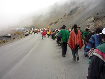 Der Streit um das Projekt im Tipnis-Park treibt seit Jahren Menschen in Bolivien auf die Straße