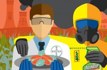 Die Bayer AG kaufte im Juni 2018 Monsanto