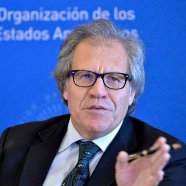Die OAS und ihr Generalsekretär, Luis Almagro, sollen sich auch in die heute stattfindenden Wahlen im Karibikstaat Dominica eingemischt haben