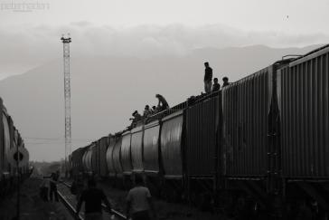 Migranten auf einem Güterzug in Zentralamerika