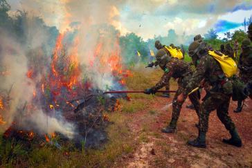 Feuerwehrleute des Militärs im Einsatz gegen Waldbrände in Brasiliens Bundestaat Pará