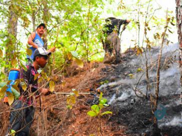 Wie hier im Bundestaat Oaxaca muss in weiten Teilen Mexikos gegen Waldbrände vorgegangen werden