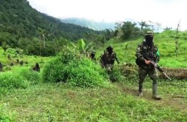 300 Paramilitärs sind am 31. Dezember ohne jegliche Hinderung durch die Streitkräfte im Chocó vorgerückt