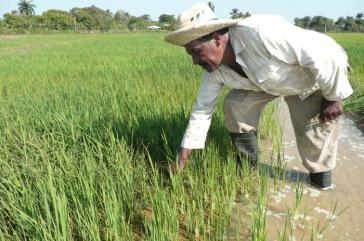 Das Verhältnis von 70 Prozent Import der Lebensmittel und 30 Prozent Produktion vor Ort ist nicht zu halten
