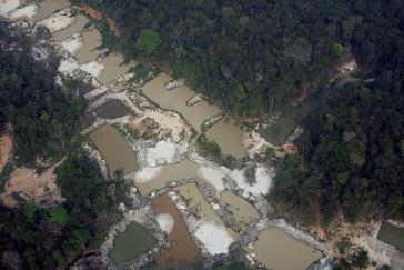Greenpeace: Die Regierung Bolsonaro militarisiert den Umweltschutz und stoppt das Engagement der Zivilgesellschaft