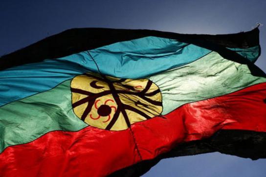 Die Flagge der Mapuche