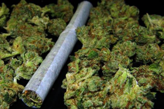 Die Abgabe in Apotheken ist Schritt zur Legalisierung von Marihuana in Uruguay