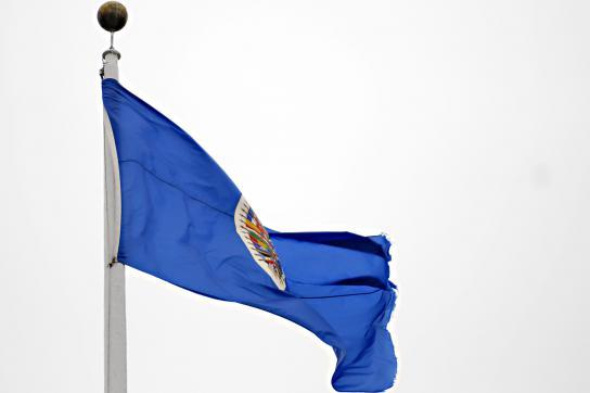 Fahne der OAS