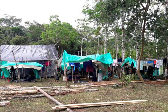 Die demobilisierten Farc-Mitglieder in Kolumbien müsse Unterkünfte errichten